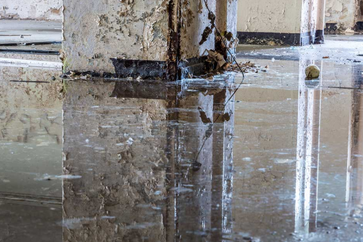 What are the different ways of detecting water damage in a residential building